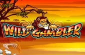 Wild Gambler slot machine online