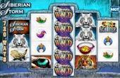 Play Siberian Storm Slot Machine