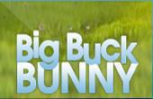 Big Buck Bunny Spielautomat