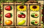 Honey Bee gratis spielen ohne Anmeldung