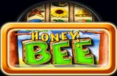 Honey Bee kostenlos ohne Anmeldung spielen