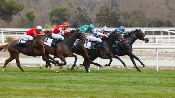Pferderennen Wetten Tipps