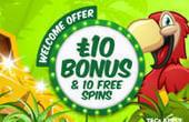 Zinger Spins casino promo code 2021