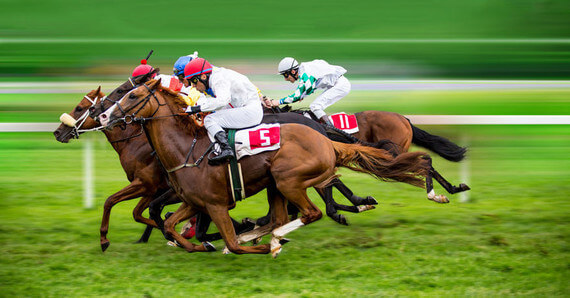Each way betting horse racing systems that work sport betting lines