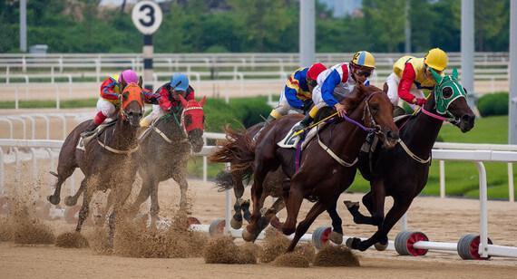 bet365 paris chevaux