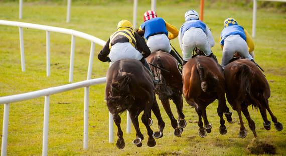 conseils de courses de chevaux pour aujourd'hui